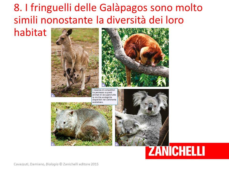 Cavazzuti, Damiano, Biologia © Zanichelli editore 2015 8. I fringuelli delle Galàpagos sono molto simili nonostante la diversità dei loro habitat