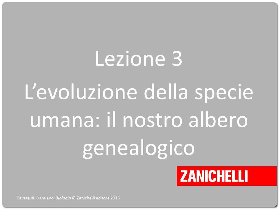 Lezione 3 L'evoluzione della specie umana: il nostro albero genealogico Cavazzuti, Damiano, Biologia © Zanichelli editore 2015