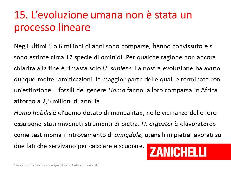 Cavazzuti, Damiano, Biologia © Zanichelli editore 2015 15. L'evoluzione umana non è stata un processo lineare Negli ultimi 5 o 6 milioni di anni sono
