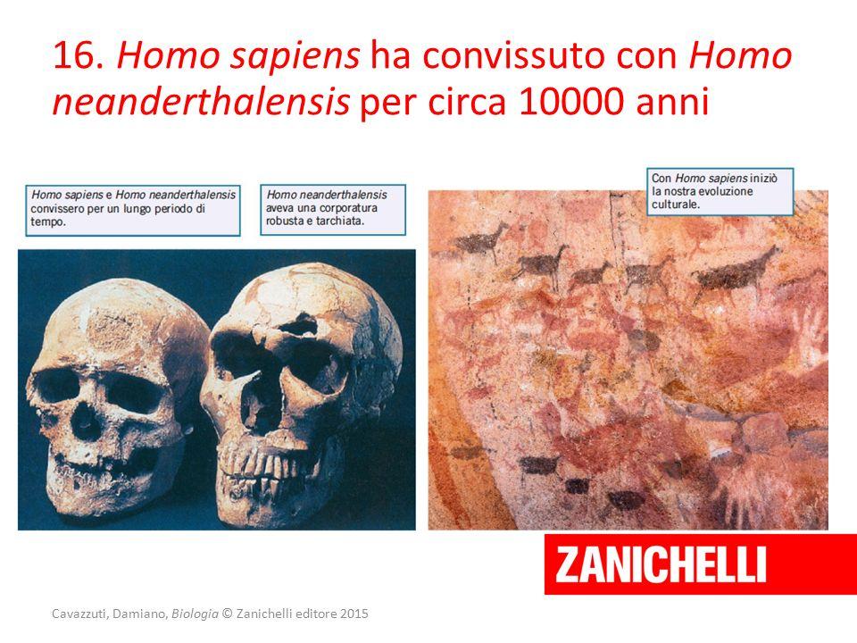 Cavazzuti, Damiano, Biologia © Zanichelli editore 2015 16. Homo sapiens ha convissuto con Homo neanderthalensis per circa 10000 anni