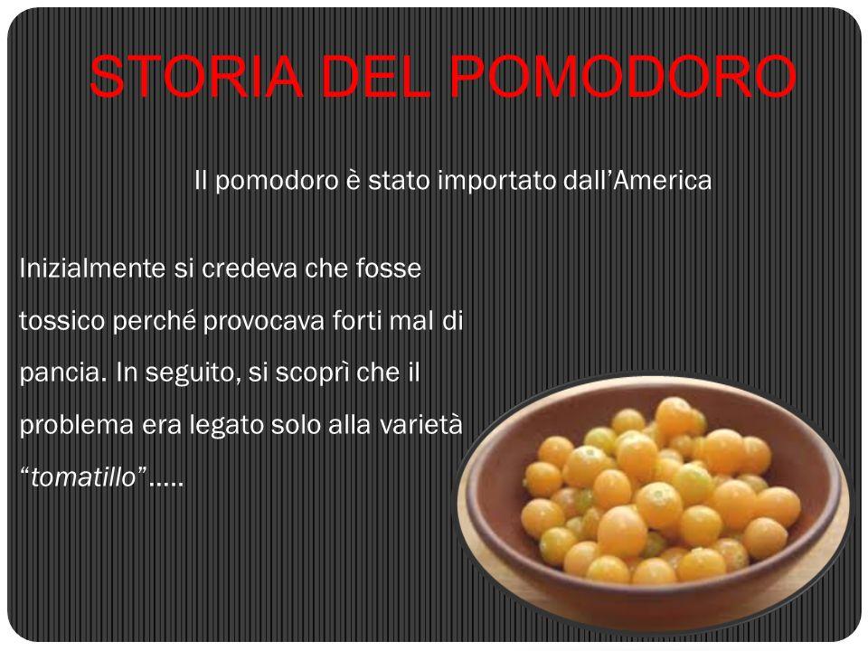 Il pomodoro è stato importato dall'America STORIA DEL POMODORO Inizialmente si credeva che fosse tossico perché provocava forti mal di pancia. In segu