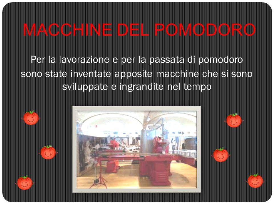 MACCHINE DEL POMODORO Per la lavorazione e per la passata di pomodoro sono state inventate apposite macchine che si sono sviluppate e ingrandite nel t