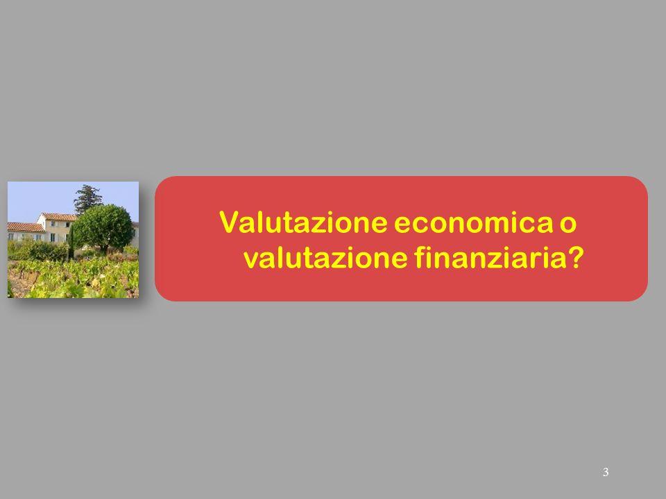 3 Valutazione economica o valutazione finanziaria?