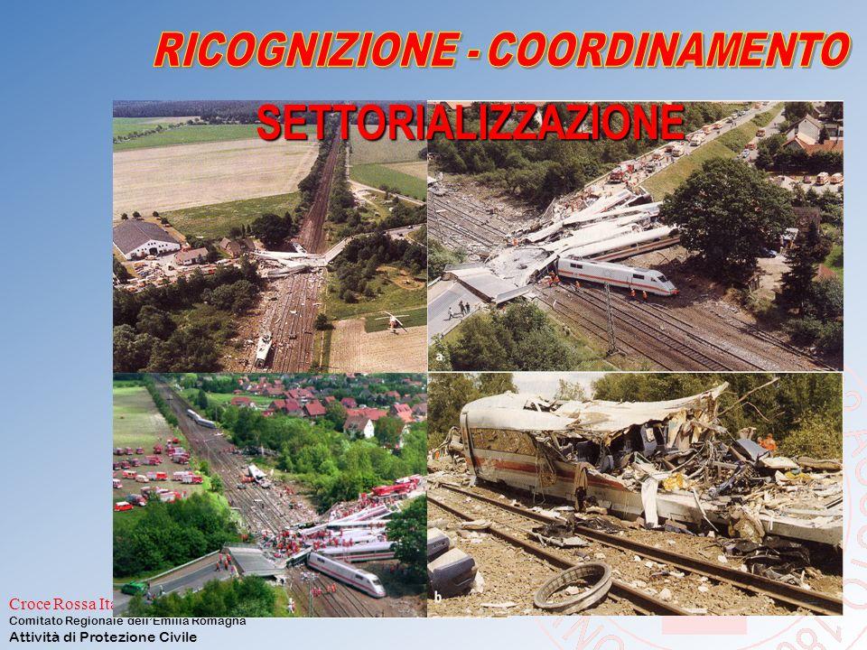 Croce Rossa Italiana Comitato Regionale dell'Emilia Romagna Attività di Protezione Civile SETTORE CANTIERE SUDDIVISIONE DELL'AREA INTERESSATA DAL DISA