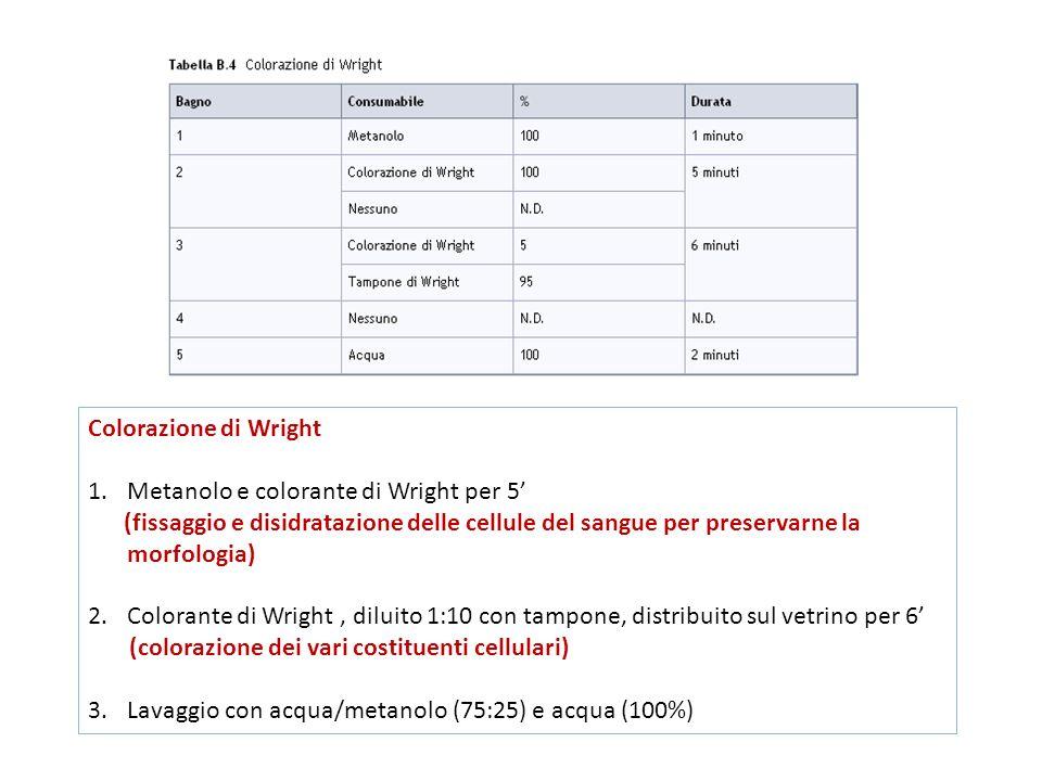 Colorazione di Wright 1.Metanolo e colorante di Wright per 5' (fissaggio e disidratazione delle cellule del sangue per preservarne la morfologia) 2.Colorante di Wright, diluito 1:10 con tampone, distribuito sul vetrino per 6' (colorazione dei vari costituenti cellulari) 3.Lavaggio con acqua/metanolo (75:25) e acqua (100%)