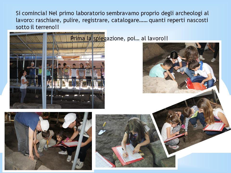 Si comincia! Nel primo laboratorio sembravamo proprio degli archeologi al lavoro: raschiare, pulire, registrare, catalogare…… quanti reperti nascosti