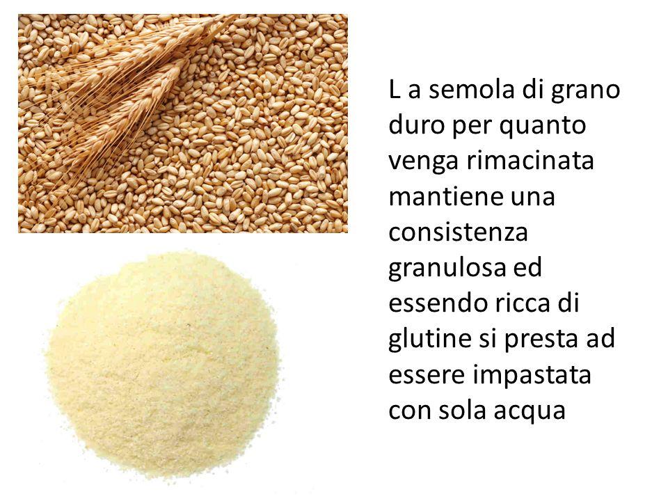 L a semola di grano duro per quanto venga rimacinata mantiene una consistenza granulosa ed essendo ricca di glutine si presta ad essere impastata con
