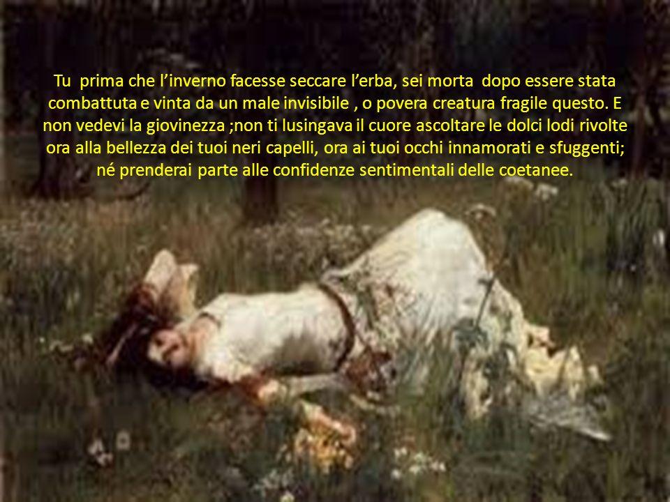 Tu prima che l'inverno facesse seccare l'erba, sei morta dopo essere stata combattuta e vinta da un male invisibile, o povera creatura fragile questo.