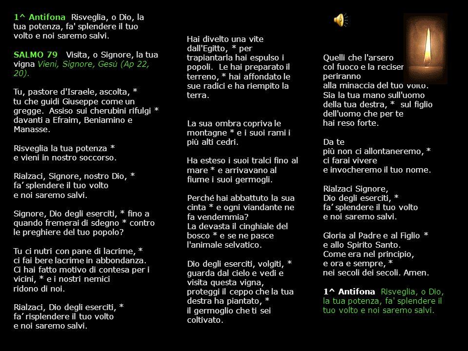 3 SETTEMBRE 2015 GIOVEDÌ - II SETTIMANA DEL SALTERIO DEL T.