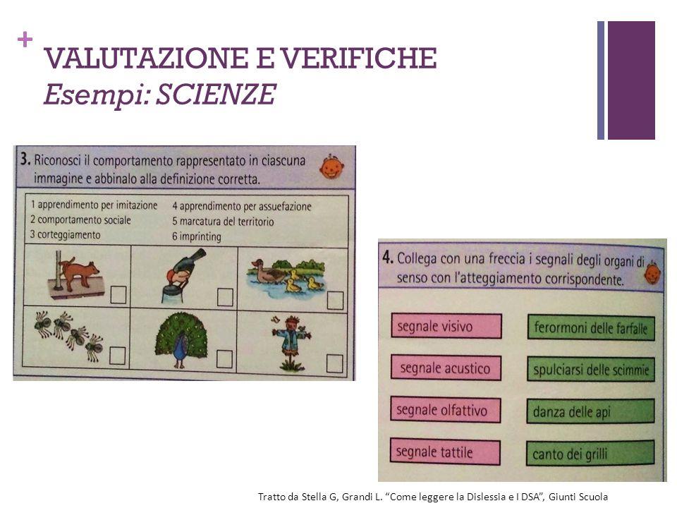 """+ VALUTAZIONE E VERIFICHE Esempi: SCIENZE Tratto da Stella G, Grandi L. """"Come leggere la Dislessia e I DSA"""", Giunti Scuola"""