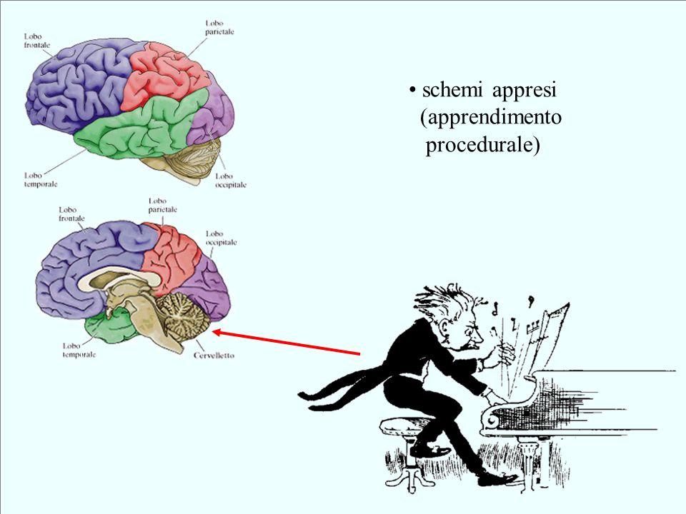 schemi appresi (apprendimento procedurale)