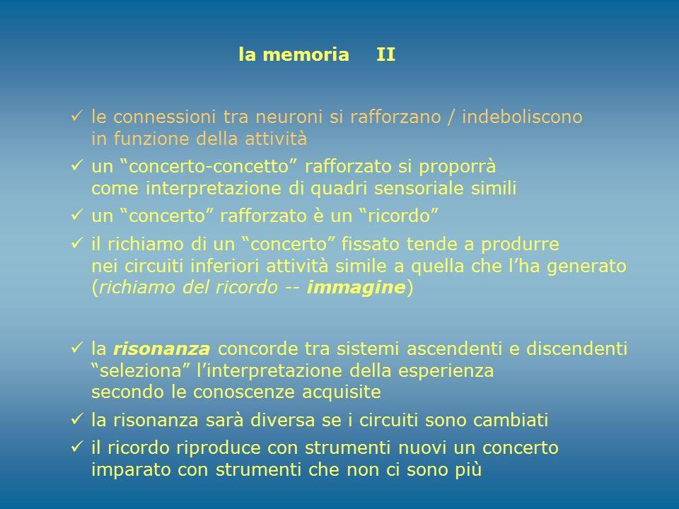 """la memoria II le connessioni tra neuroni si rafforzano / indeboliscono in funzione della attività un """"concerto-concetto"""" rafforzato si proporrà come i"""