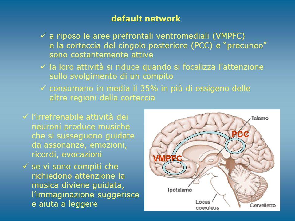 """default network a riposo le aree prefrontali ventromediali (VMPFC) e la corteccia del cingolo posteriore (PCC) e """"precuneo"""" sono costantemente attive"""