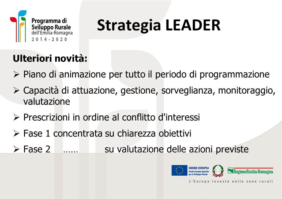 Strategia LEADER Ulteriori novità:  Piano di animazione per tutto il periodo di programmazione  Capacità di attuazione, gestione, sorveglianza, moni