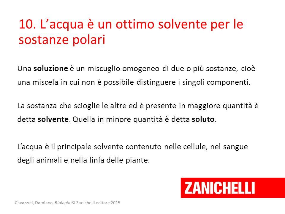 Cavazzuti, Damiano, Biologia © Zanichelli editore 2015 10. L'acqua è un ottimo solvente per le sostanze polari Una soluzione è un miscuglio omogeneo d