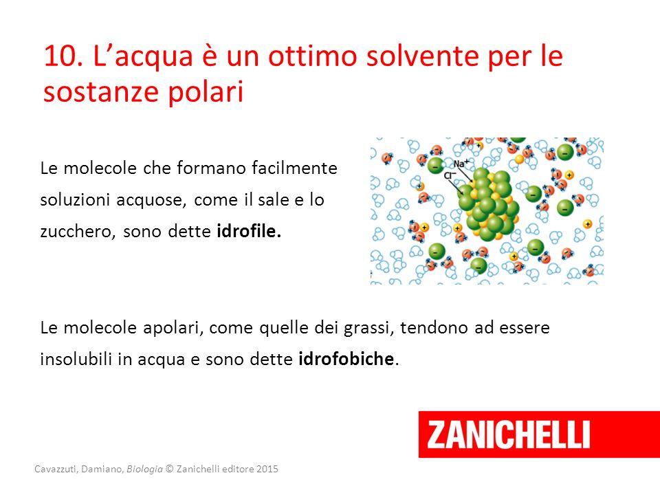 Cavazzuti, Damiano, Biologia © Zanichelli editore 2015 Le molecole che formano facilmente soluzioni acquose, come il sale e lo zucchero, sono dette id