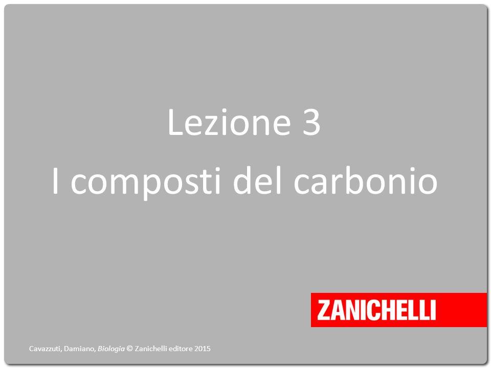Lezione 3 I composti del carbonio Cavazzuti, Damiano, Biologia © Zanichelli editore 2015