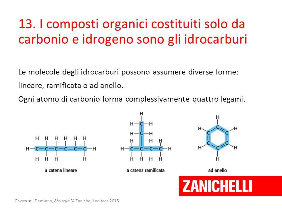 Cavazzuti, Damiano, Biologia © Zanichelli editore 2015 13. I composti organici costituiti solo da carbonio e idrogeno sono gli idrocarburi Le molecole