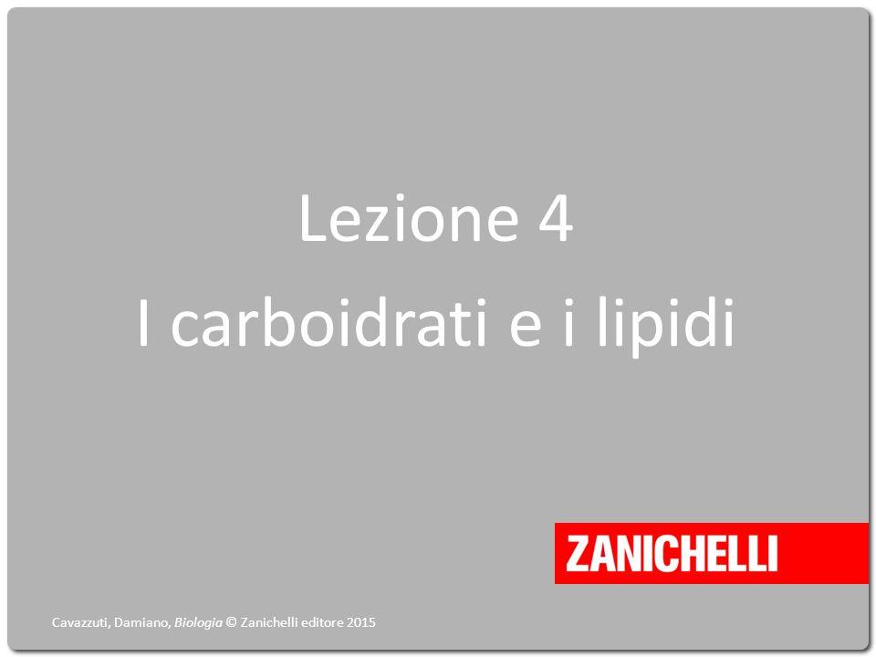 Lezione 4 I carboidrati e i lipidi Cavazzuti, Damiano, Biologia © Zanichelli editore 2015