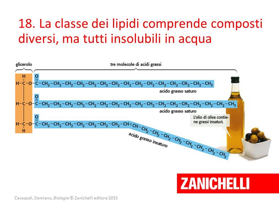 Cavazzuti, Damiano, Biologia © Zanichelli editore 2015 18. La classe dei lipidi comprende composti diversi, ma tutti insolubili in acqua