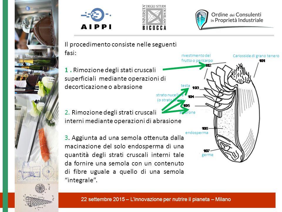 22 settembre 2015 – L'innovazione per nutrire il pianeta – Milano Cariosside di grano tenero rivestimento del frutto o pericarpo testa strato nucellar