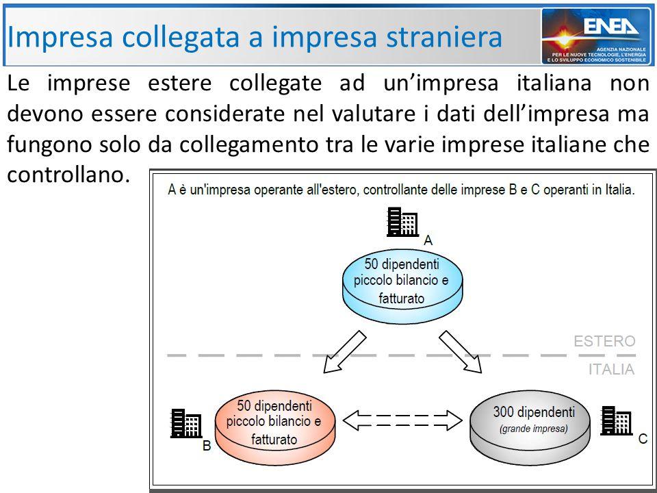 Impresa collegata a impresa straniera Le imprese estere collegate ad un'impresa italiana non devono essere considerate nel valutare i dati dell'impresa ma fungono solo da collegamento tra le varie imprese italiane che controllano.
