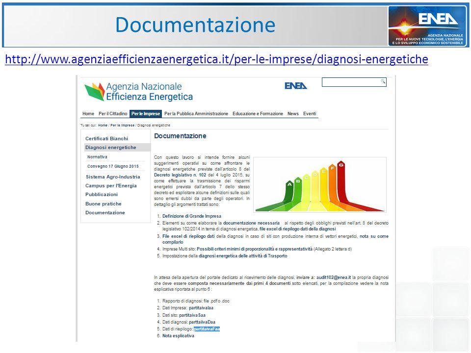 http://www.agenziaefficienzaenergetica.it/per-le-imprese/diagnosi-energetiche Documentazione