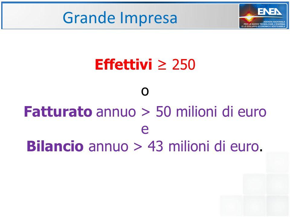 Effettivi ≥ 250 o Fatturato annuo > 50 milioni di euro e Bilancio annuo > 43 milioni di euro.