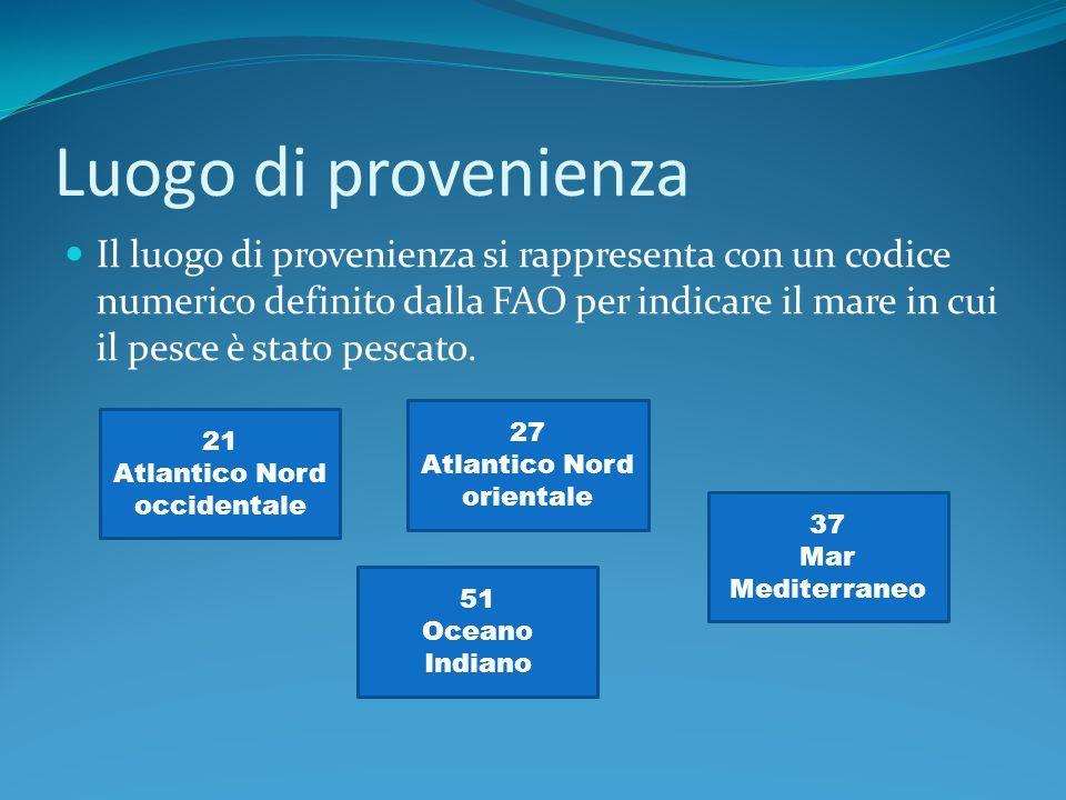 Luogo di provenienza Il luogo di provenienza si rappresenta con un codice numerico definito dalla FAO per indicare il mare in cui il pesce è stato pescato.