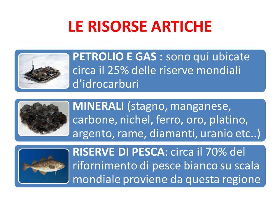 LE RISORSE ARTICHE PETROLIO E GAS : sono qui ubicate circa il 25% delle riserve mondiali d'idrocarburi MINERALI (stagno, manganese, carbone, nichel, f