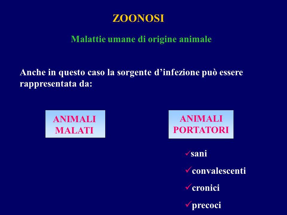 ZOONOSI Malattie umane di origine animale Anche in questo caso la sorgente d'infezione può essere rappresentata da: ANIMALI MALATI ANIMALI PORTATORI s