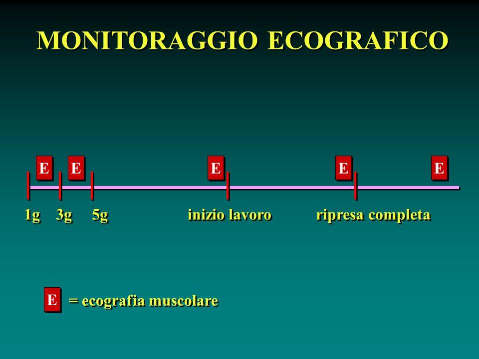 MONITORAGGIO ECOGRAFICO 1g 3g 5g inizio lavoro ripresa completa E E E E E E E E E E E E = ecografia muscolare