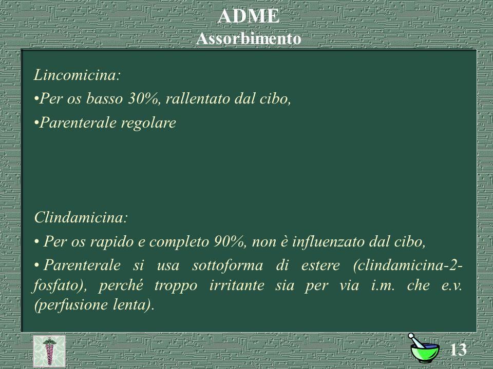 12 Stafilococchi meti-R, Streptococcus faecalis e faecium, Haemophilus influenzae, Branhamella catarrhalis, Neisseria meningitidis e gonorrhoeae (natu
