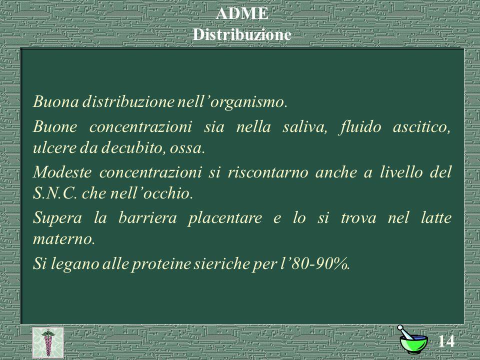 13 Lincomicina: Per os basso 30%, rallentato dal cibo, Parenterale regolare Clindamicina: Per os rapido e completo 90%, non è influenzato dal cibo, Parenterale si usa sottoforma di estere (clindamicina-2- fosfato), perché troppo irritante sia per via i.m.