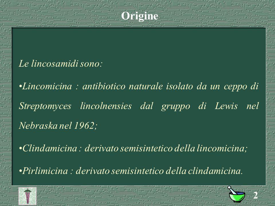 1 Alfonso Carlo Antonio Tesorone LINCOSAMIDI: Origine, SAR, ADME, Usi.
