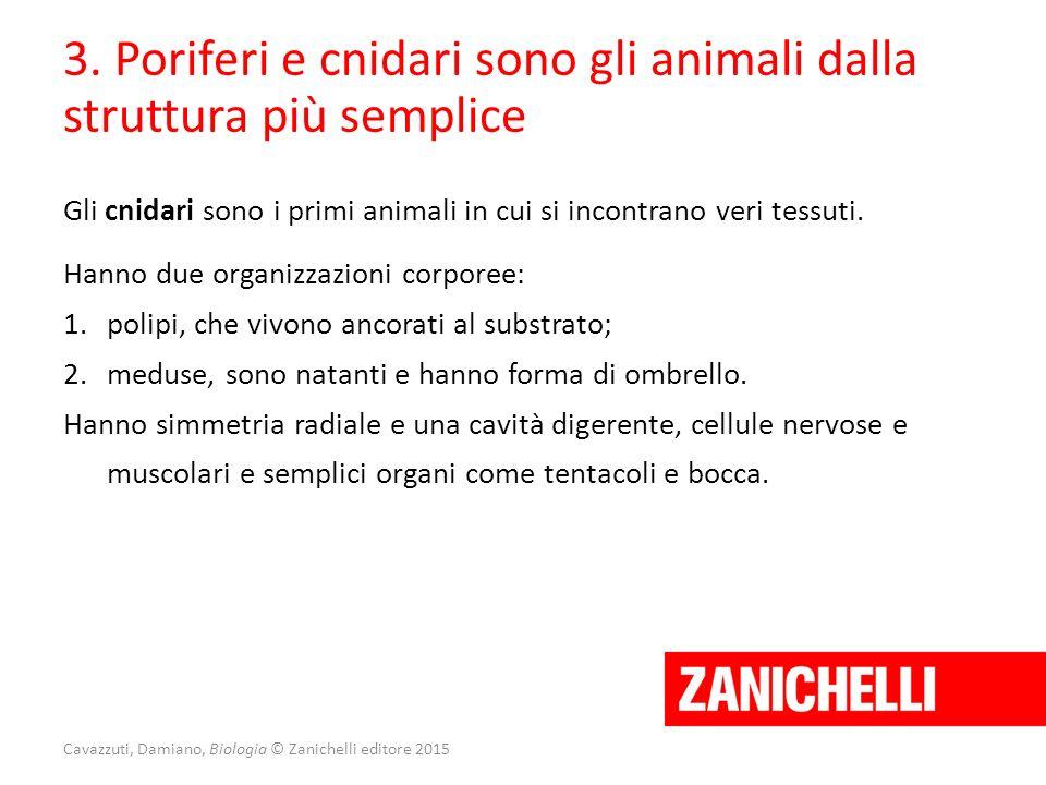 Cavazzuti, Damiano, Biologia © Zanichelli editore 2015 3. Poriferi e cnidari sono gli animali dalla struttura più semplice Gli cnidari sono i primi an