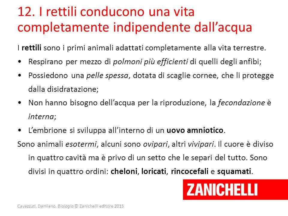 Cavazzuti, Damiano, Biologia © Zanichelli editore 2015 12. I rettili conducono una vita completamente indipendente dall'acqua I rettili sono i primi a