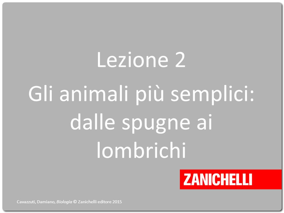 Lezione 2 Gli animali più semplici: dalle spugne ai lombrichi Cavazzuti, Damiano, Biologia © Zanichelli editore 2015