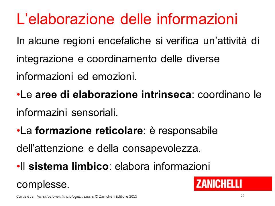 22 Curtis et al. Introduzione alla biologia.azzurro © Zanichelli Editore 2015 L'elaborazione delle informazioni In alcune regioni encefaliche si verif