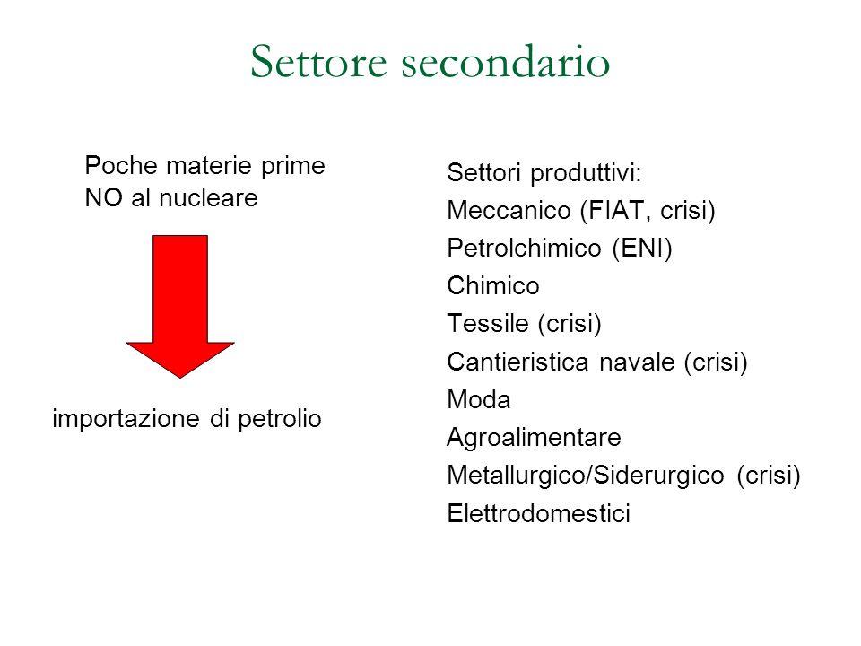 Settore secondario Poche materie prime NO al nucleare importazione di petrolio Settori produttivi: Meccanico (FIAT, crisi) Petrolchimico (ENI) Chimico