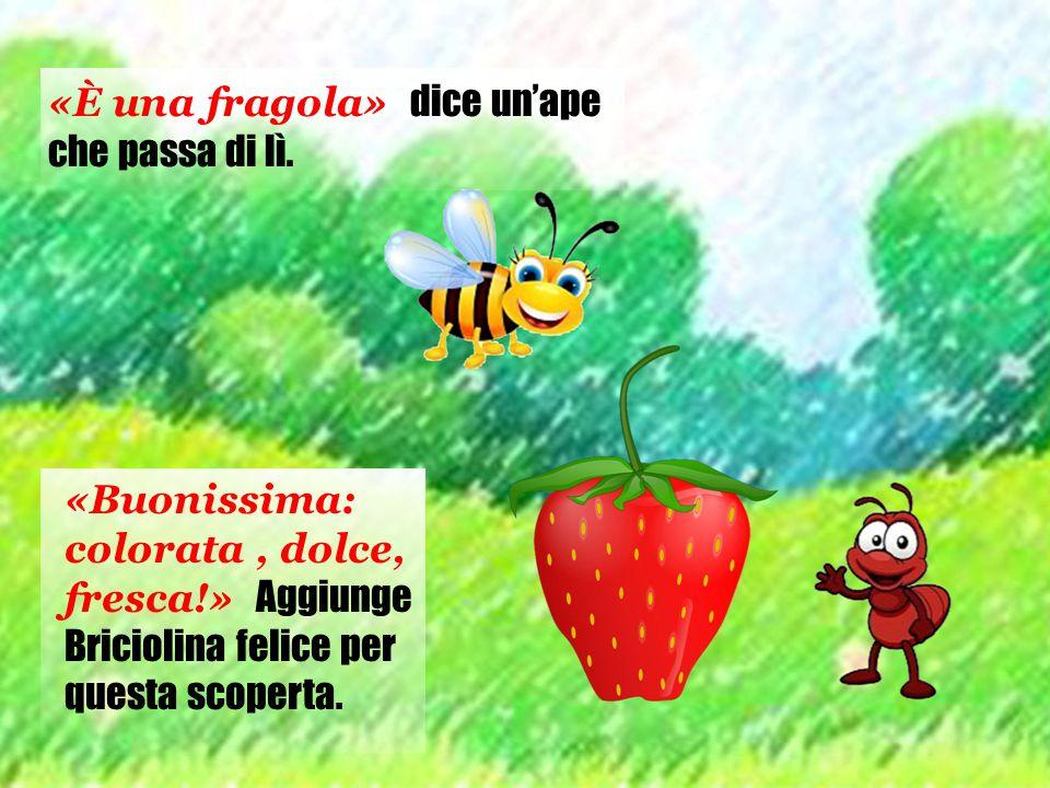 «È una fragola» dice un'ape che passa di lì. «Buonissima: colorata, dolce, fresca!» Aggiunge Briciolina felice per questa scoperta.