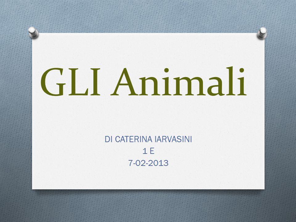 GLI Animali DI CATERINA IARVASINI 1 E 7-02-2013