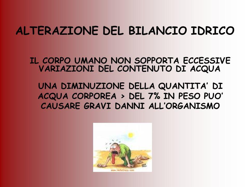 ALTERAZIONE DEL BILANCIO IDRICO IL CORPO UMANO NON SOPPORTA ECCESSIVE VARIAZIONI DEL CONTENUTO DI ACQUA UNA DIMINUZIONE DELLA QUANTITA' DI ACQUA CORPO