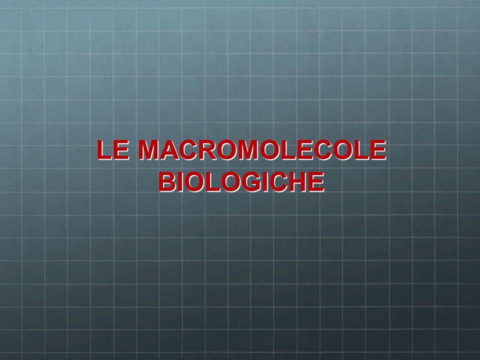 LE MACROMOLECOLE BIOLOGICHE