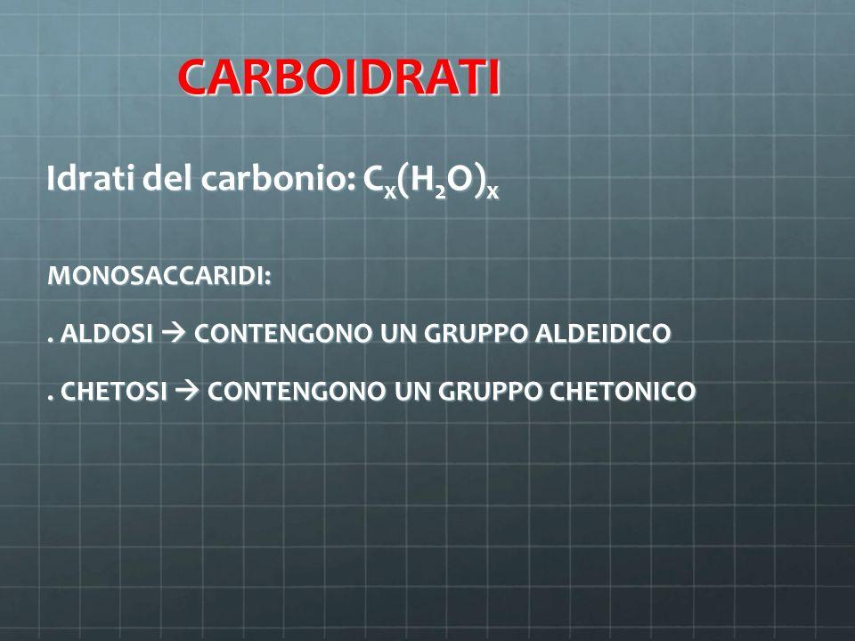 CARBOIDRATI Idrati del carbonio: C x (H 2 O) x CARBOIDRATI Idrati del carbonio: C x (H 2 O) x MONOSACCARIDI:. ALDOSI  CONTENGONO UN GRUPPO ALDEIDICO.