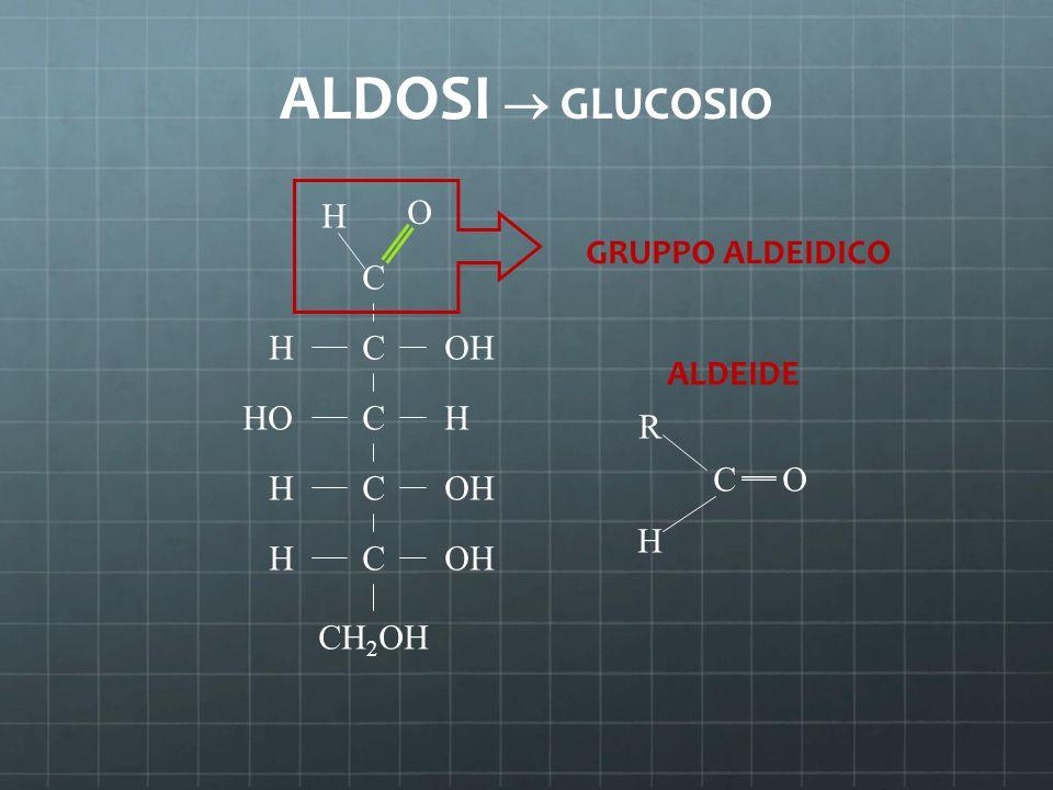 ALDOSI  GLUCOSIO C C C C C CH 2 OH H H H H OH HO O H GRUPPO ALDEIDICO R H CO ALDEIDE