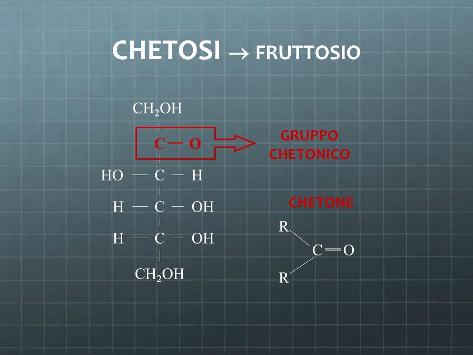 CHETOSI  FRUTTOSIO C C C C CH 2 OH H H H O OH HO GRUPPO CHETONICO R R CO CHETONE CH 2 OH