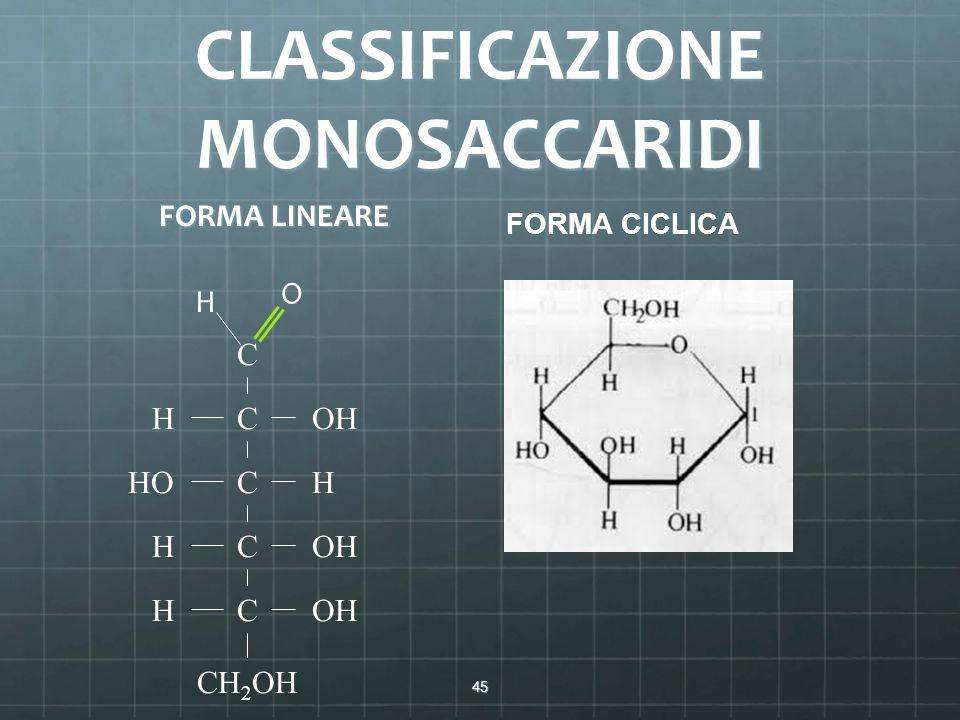 CLASSIFICAZIONE MONOSACCARIDI FORMA LINEARE 45 C C C C C CH 2 OH H H H H OH HO O H FORMA CICLICA