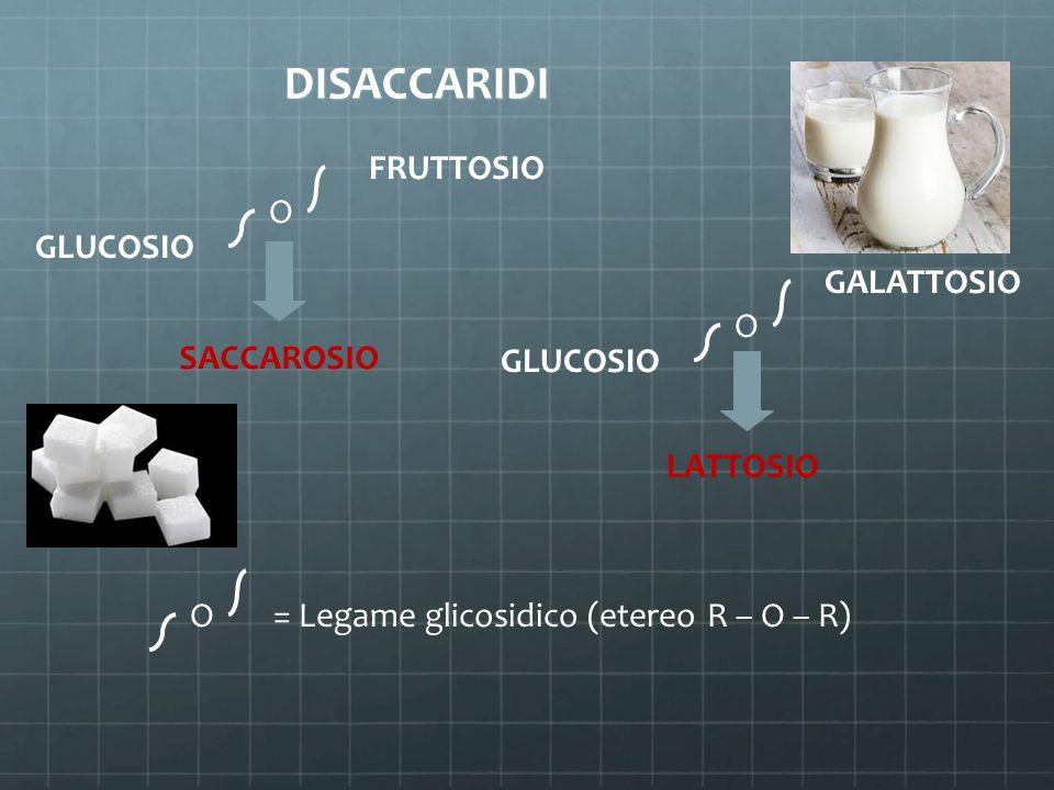 DISACCARIDI DISACCARIDI FRUTTOSIO GLUCOSIO O SACCAROSIO GALATTOSIO GLUCOSIO O LATTOSIO O = Legame glicosidico (etereo R – O – R)