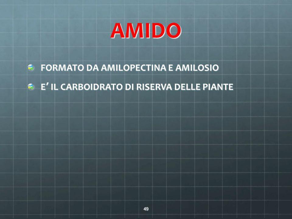 AMIDO FORMATO DA AMILOPECTINA E AMILOSIO E' IL CARBOIDRATO DI RISERVA DELLE PIANTE 49
